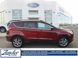 2014 Ford Escape SE [Rear View Camera]