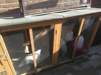 2x laying hens and chickencoop with all food