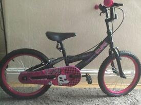 Eclipse children's bike