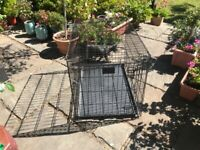 Large foldable dog crate