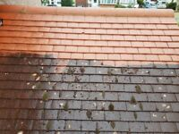 ROOF CLEANING - MOSS , ALGAE , LICHEN REMOVAL BY PRESSURE WASHING