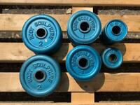 (SSTC) 25kg of Bodysculpture Standard Cast Iron Weight Plates (Delivery Available)