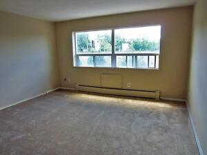 2 Bedroom Apartment for Rent on the Thames **Old South London** London Ontario image 7