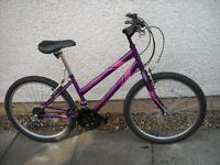 Girls Apollo Mountain Bike £35 ono