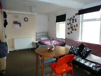 Massive room to share with Spanish girl - Zone 1