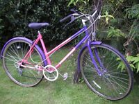 ladies hybrid 19 in frame,runs well,tidy classic