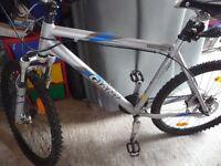 giant terrago mountain bike.