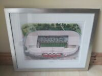 Framed Picture Celtic Park Hanging Wall Art (Fantastic Condition)