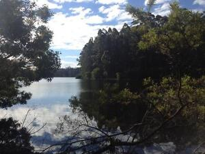 Quininnup block on Karri Lake Quinninup Manjimup Area Preview