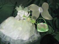 Disney Fairy Tinkerbell Fancy Dress Costume