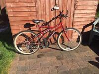 2 Adult Bikes