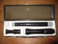 Z Recorder with case