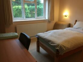 A beautiful sunny single/double bedroom overlooking the garden available for rent