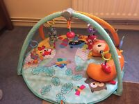 fisher price moonlight meadow delux play gym