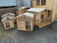 TOP QUALITY DOG KENNELS FROM £80.00