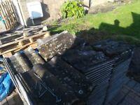 Raglan 50 roof tiles