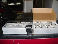 pyramid ceiling lights brand new 2 boxes 10 in each box and extractor light fan all new