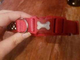 Brand new and unused dog collar!