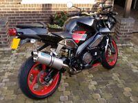 2004 Aprilia RSV 1000 Tuono Naked Streetfighter