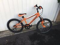 Freespirit Chaotic mountain bike childs