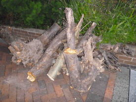 Logs for FREE 2 chopped up Apple Trees.