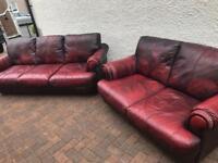 Tidy. 3+2. Burgundy. Leather. Sofa