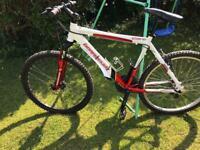 Mountain bike Barracuda