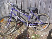 CCM 18 speed, With 2 good tires, $35.00