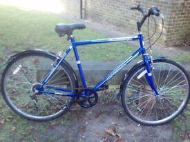 Like new Professional Tourist Mens bike only £75