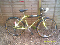 EMMELLE TOLEDO MOUNTAIN BIKE ONE OF MANY QUALTY BICYCLES FOR SALE