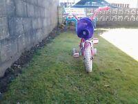 Raleigh Molly girls infant bike
