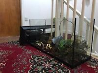 Fish Tank 2ft 90litre for tropical/ cold water or Marine fish tank
