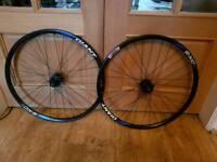 Gaint s- xc2 mountain bike wheels