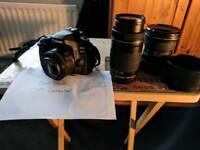 Canon 80d / 50mm stm/ 55-250mm stm/ tokina 11-16mm 2.8 dxii
