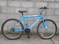 mens bike blue emulator challenge