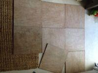 8 Ceramic Floor or wall tiles