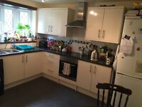 Double room to rent (2 month lease)