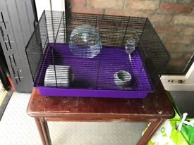 Hamster cage with bits bedding and food