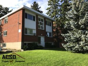 ACSO - Conveniently Located 1 BDRM Apt. -  Southdale Area