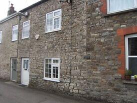 Three bedroom character cottage in popular Mid Devon village