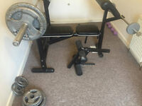 Wights bench/rack with barbell and weights
