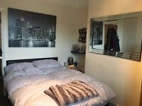 Wells Road - Double room in great location at brilliant price