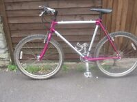 CARRERA QUEST MOUNTAIN BIKE - Reduced to £40