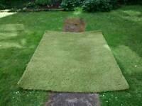 Free Green Hampen Rug