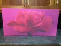 Canvas rose pictures