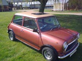 Austin Mini 1100 Special, 1979