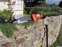 Black & Decker GPC1820L20 18v Cordless Pole Chainsaw Tree Pruner Two Months Old Still Under Warranty