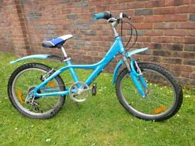 Girls giant mountain bike
