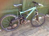 Saracen arachnid mountain bike