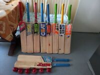 10 cricket bats 12 cricket hard balls 2 bat cases